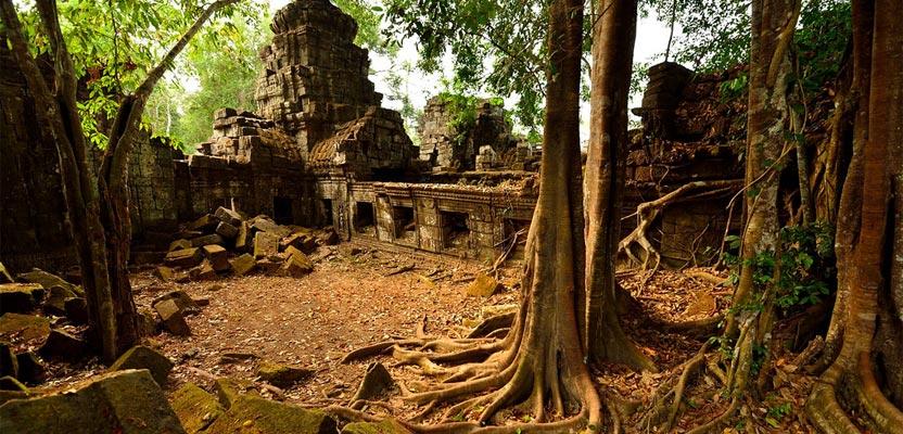 cambodjagoedekwali